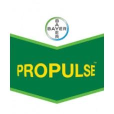 PROPULSE PACK (Biscaya+ Propulse:5 +15)